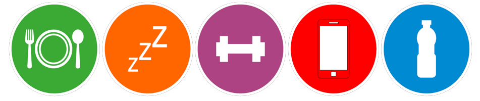 Goodness2Greatness logo comprises of 5 circles each with a child-like logo for nutrition, play and activity based exercise.